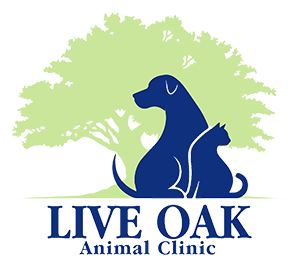 Live Oak Animal Clinic